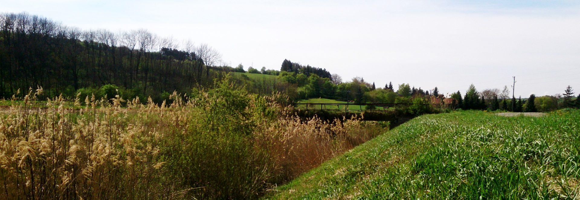 Dolna Austria panorama z mostkiem w tle