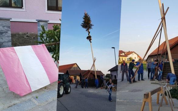 Maibaum, stawianie drzewa majowego, tradycja